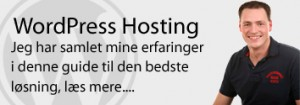 WordPress hosting guide