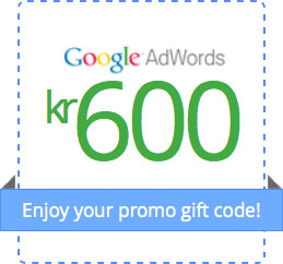 google-adwords-kupon1